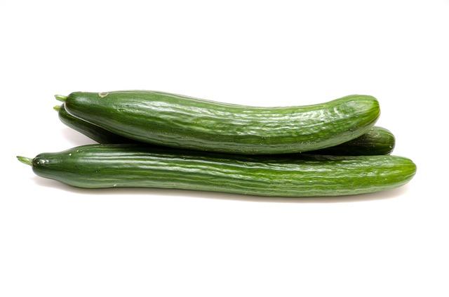 salátová okurka